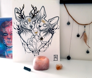 sphynx cats crystals and love